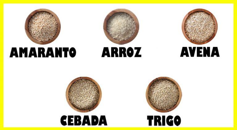 los 5 cereales del plato del bien comer