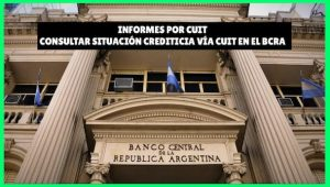 Informes por CUIT del Banco Central